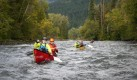 Paddlers Adams 4